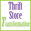 thrift store transformations