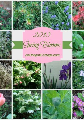 Spring Blooms & April Chores {TGP}