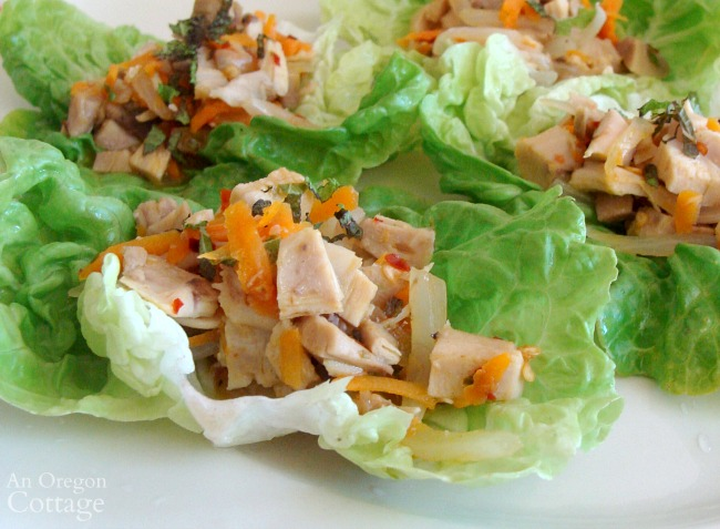 Chicken lime lettuce wraps- one dish dinner made with rotisserie chicken