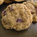 Cranberry-Walnut-Oatmeal-cookie