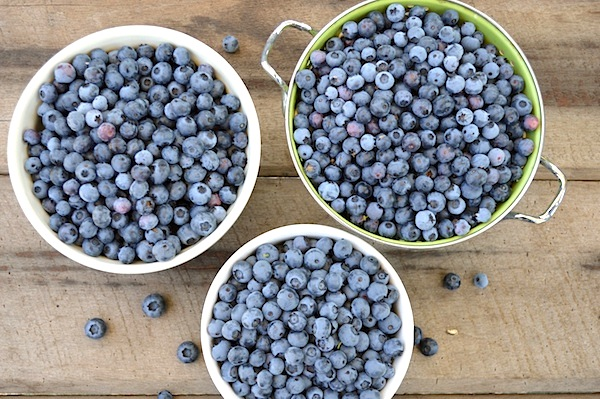Preserving Blueberries