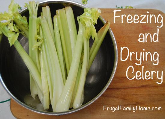 Freezing-Celery