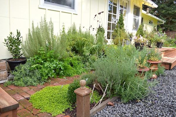 October 2013 Herb Garden