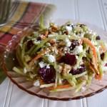 Cranberry Walnut-Feta Broccoli Slaw - An Oregon Cottage