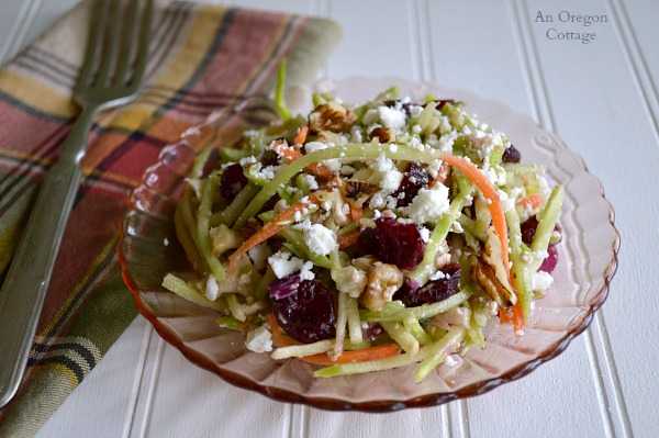 Cranberry Walnut-Feta Broccoli Slaw - An Oregon Cottage