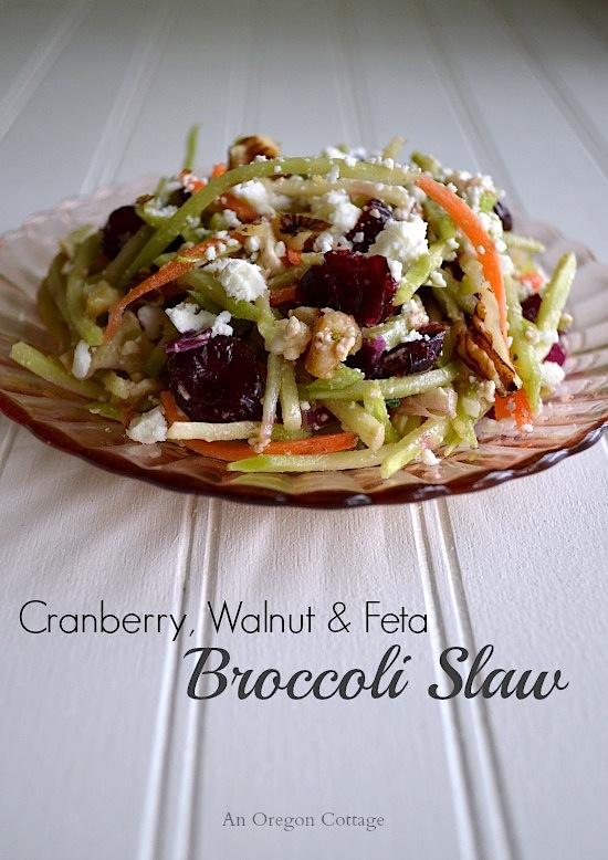 Cranberry Walnut and Feta Broccoli Slaw - An Oregon Cottage