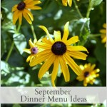 September Dinner Menu Ideas - An Oregon Cottage
