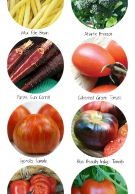Seed Order: 8 Vegetable Varieties To Try In 2015