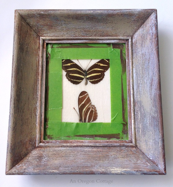 Butterfly Specimen Frame Makeover Step 2