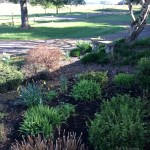 Three Things: Yard Clean Up, Retirement and A Fail