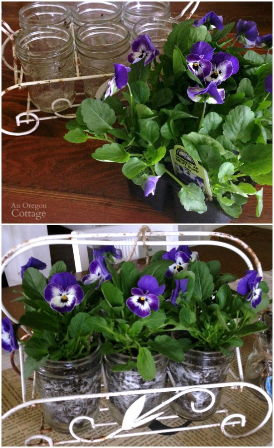 Mason Jars, vintage glass holder and live pansy easy centerpiece