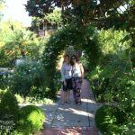 Tuesday Garden Party 8.18.15