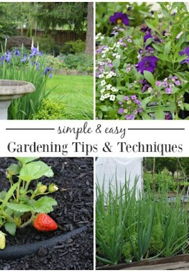 Simple & Easy Gardening Tips and Techniques {Tuesdays In The Garden}
