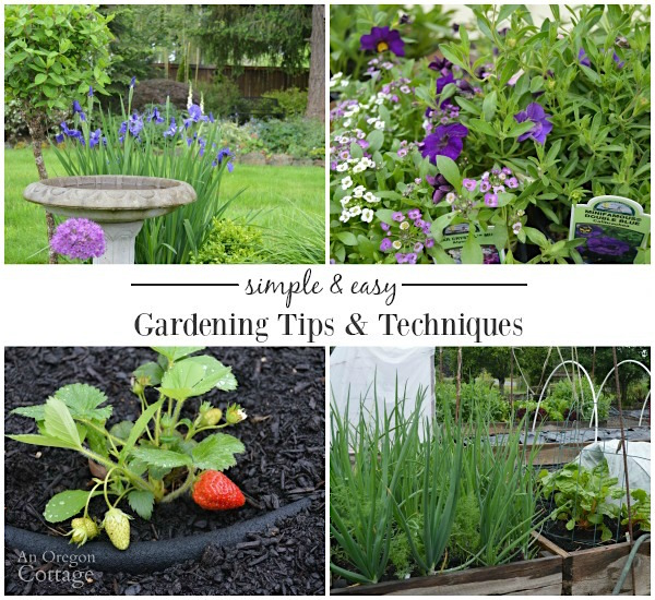 Simple and easy gardening techniques for your best garden ever!