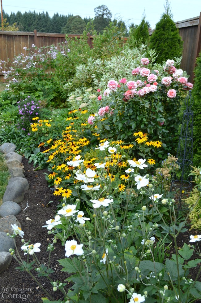 Pruning and deadheading in summer for colorful flower borders into fall.
