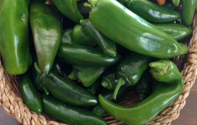 Gardening to Save Money-hot peppers
