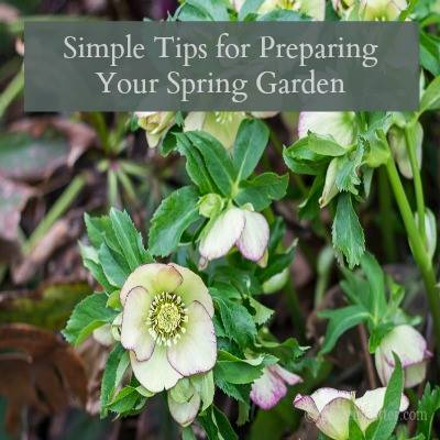 Tips for preparing spring garden-Hearth and Vine