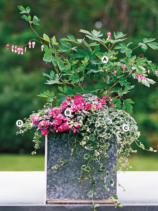 12 Beautiful Container Gardening Ideas For Shade