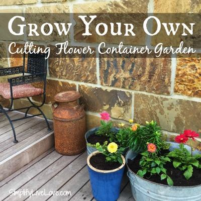 Grow a Cutting Flower Container Garden at Simplify Live Love