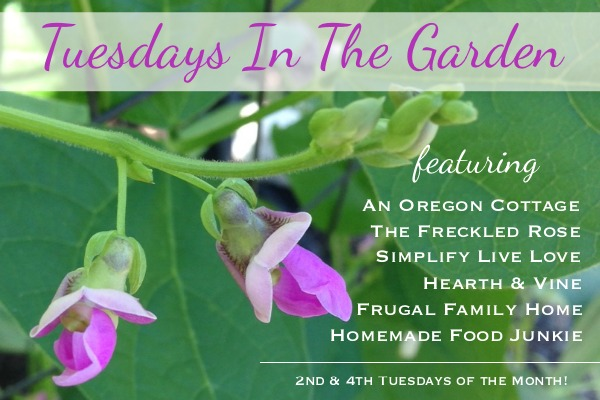Tuesdays in the Garden 6-2016