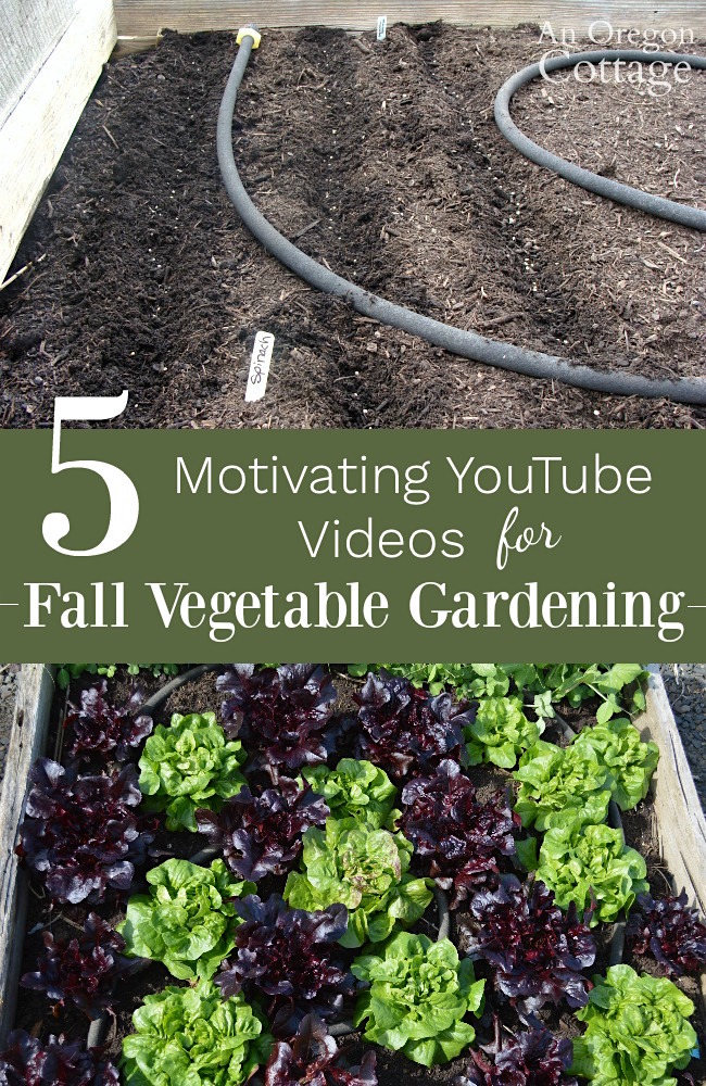 Garden Ideas Videos fall gardening ideas: 5 motivating videos for vegetables