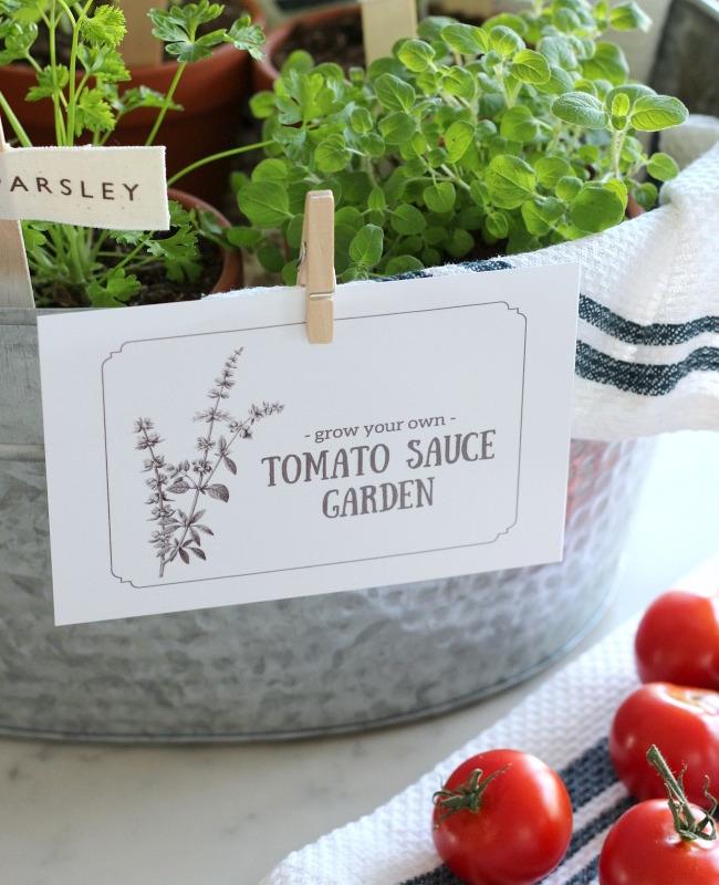 """""""Grow a Tomato Sauce Garden"""" Gift Basket @ Satori Design"""