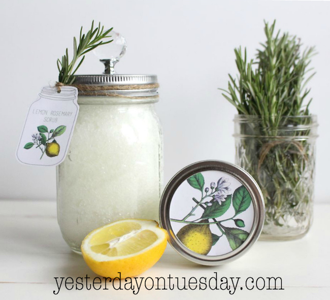 Lemon Rosemary Scrub with Printable Tags at Yesterday on Tuesday