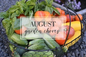 August Garden Task Checklist