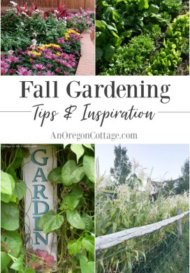 15+ Fall Gardening Tips & Inspiration