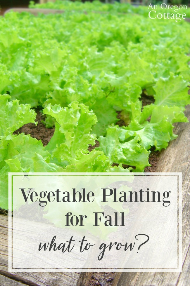 Vegetable Planting For Fall What To Grow An Oregon Cottage