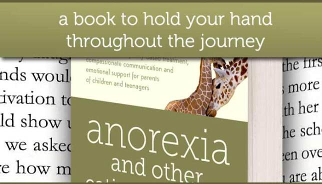 A book to hold your hand throughout the journey - anorexia and other eating disorders by Eva Musby