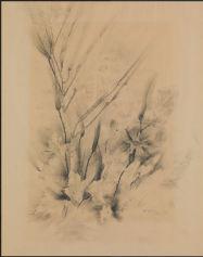otto-rydelius-3