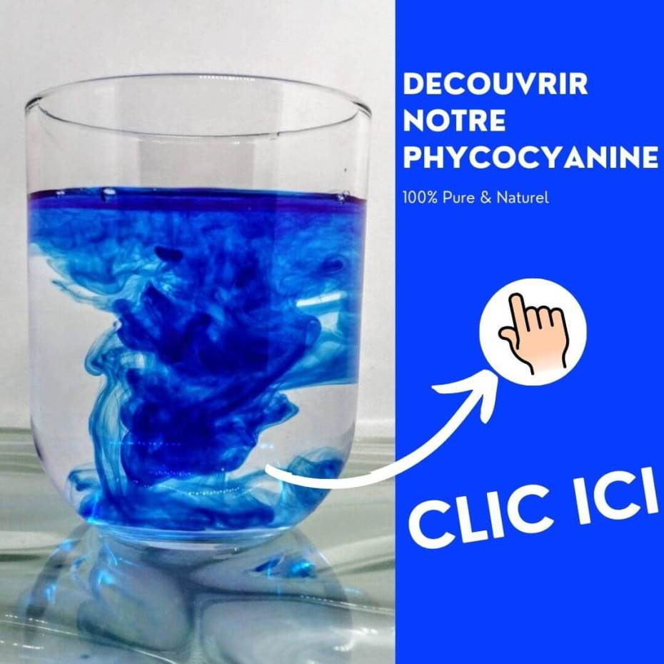 Phycocyanine bienfaits