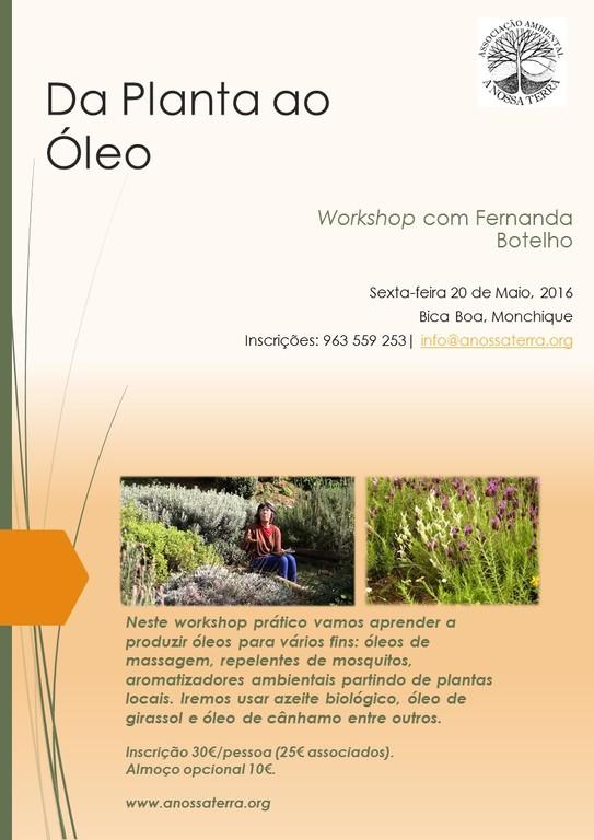 29042016 Proposta cartaz para workshop Fernanda Botelh v1 nº1 PT