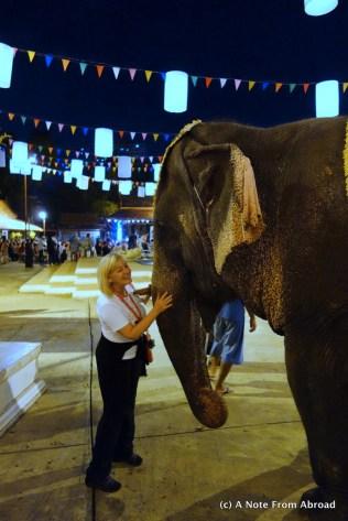 Joanne with elephant