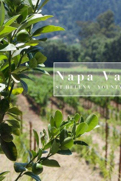 My Napa Valley Dining Guide