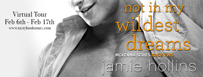 Not In My Wildest Dreams by Jamie Hollins Virtual Tour