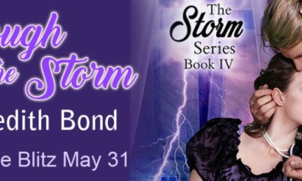 Through The Storm by Meredith Bond Release Blitz