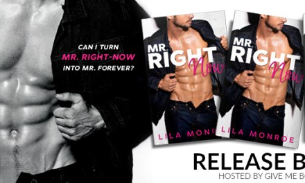 Mr. Right Now by Lila Monroe Release Blitz