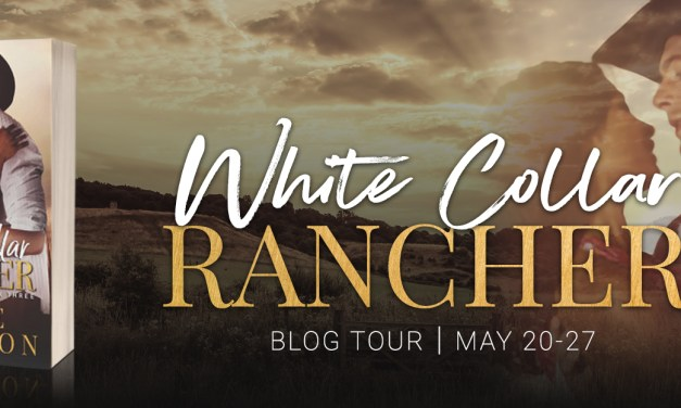 White Collar Rancher by Marie Johnston Blog Tour