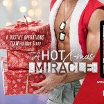 A HOT Christmas Miracle by Lynn Raye Harris Release Blitz