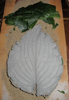 concrete leaves step 5