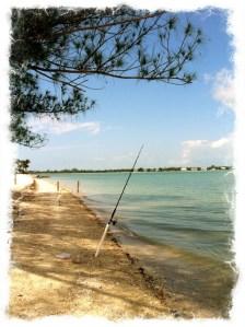 Wordless Wednesday: Fishing from Sanibel Island, FL