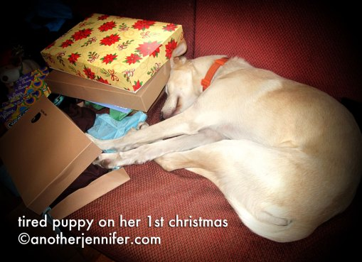 Wordless Wednesday (12.26.12): Tired Puppy on Her 1st Christmas by Jennifer Barbour