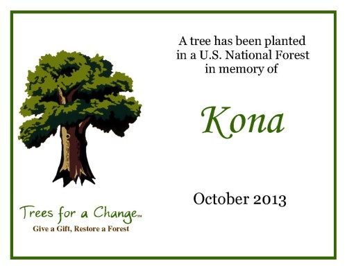 Kona's certificate. You can see his photo on the pet memorial page.