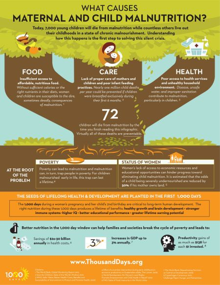 What-Causes-Maternal-and-Child-Malnutrition-Infographic