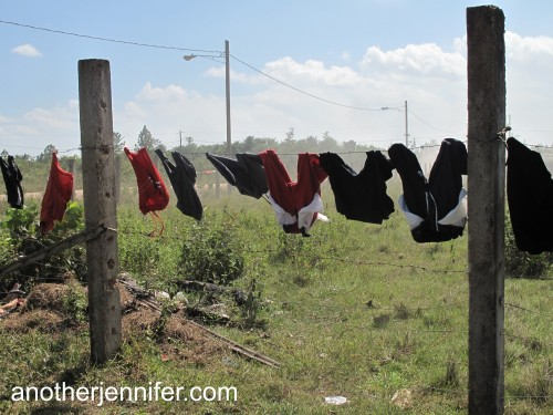 Wordless Wednesday (3.19.14): A common sight in Nicaragua.