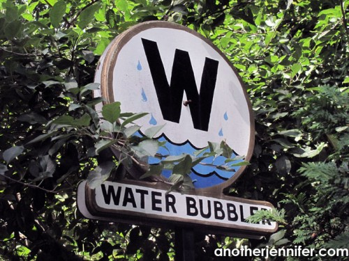 Wordless Wednesday (9.10.14): Water Bubbler by Jennifer Iacovelli