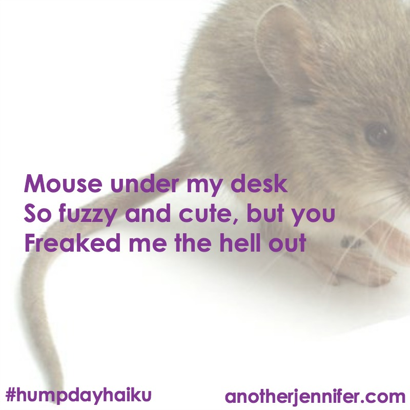mouseunderdesk