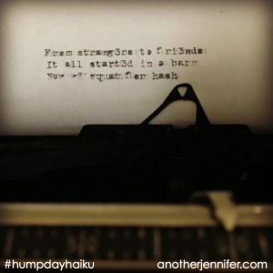 Hump Day Haiku: From Strangers to Friends